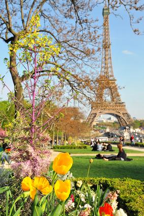 Voir la Tour Eiffel lors des voyages relooking